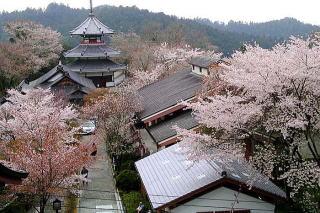 Kiyooto4112_038