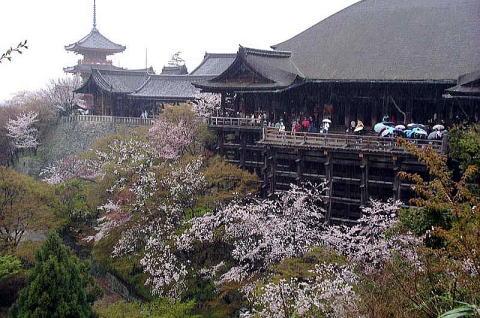 Kiyooto4112_078